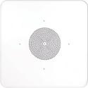 Speco G86TG2X2 2 Ft x 2 Ft G86 Ceiling Tile Speaker