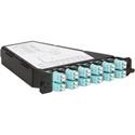 ADC-Commscope TFP-12MPRDQ2 Multimode 6 LC Duplex (12-Fiber) Patch Cassette Angle Right