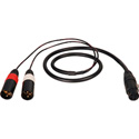 TecNec Premium Y-Cable - XLR Female To 2 -XLR Male -3ft