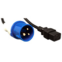Tripp Lite P070-010 10ft Power Cord Adapter 16A 250V IEC309 (2P plus G) to C19 10 Foot