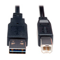 Tripp Lite UR022-006 USB 2.0 Reversible A Male to B Male Cable - 6 ft.
