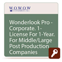 Wowow ISL-721 WonderLook Pro CORPORATE One Year License - 20 Devices Unlimited Cameras