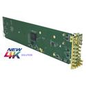 Cobalt Digital 9914DA-DUAL-1X8-12G 12G/6G/3G/HD/SD-SDI Dual 1x8 Reclocking Distribution Amplifier