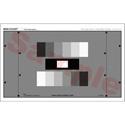 High Definition Grey Scale (6 Step Gamma Comp) Mini Chart