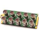 Apantac OG-DA-8HD-II-SET-1 Triple-Rate 1 x 8 SDI Distribution Amplifier with Passive Loop-Output