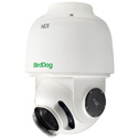 BirdDog Studio BDA200GEN2 BirdDog Eyes A200 IP67 Weatherproof 30x Full NDI PTZ Camera with Sony Sensor & SDI
