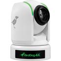 BirdDog Studio BDP4KBUNDLE-W 3 x P4K PTZ Camera Bundle with FREE PTZ Keyboard - White