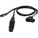Camplex BLACKJACK 4-Pin XLR Female & 2.5mm DC Plug to P-TAP Y-Cable - 18-Inch