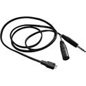Beyerdynamic 10ft Cable for DT 290 w/ 3 Pin XLR male and 1/4in TRS connectors