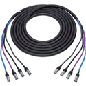 Laird CAT6AXTRM4EE-010 4 Channel Cat6A Tactical Cable with RJ45 etherCON TOP Connectors - 10 Foot