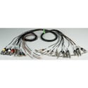 Custom 12 Channel Snake Designed with Mogami 2933 Multichannel Cable