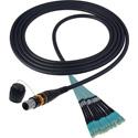 Camplex CMX-OCMTPMMSC10 MTP/SC 0M3 Multimode 50/12 Fiber Micro Dist Pln OM3 - 10 Foot