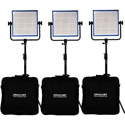 Dracast DRLK3X1000BQ LED1000 Pro Bi-Color LED3-Light Kit with Gold Mount Battery Plates and Stands