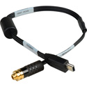 Sescom DSLR-550D-HOCF Canon T2i 550D & 60D DSLR Magic Lantern AV Out Headphone Monitoring Cable USB to 3.5mm