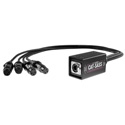 Elite Core Audio CAT-SASS-3PF Snake System - Ethernet Breakout with 4 XLRF 3-Pin Neutrik Connectors - Analog Audio