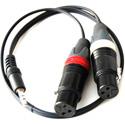 ETS PA912 2-Channel DSLR Audio Camera Balun