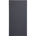 Primacoustic Broadway Series 24x48 Broadband Panels 2 Inch (Beveled Edge) Black
