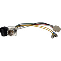 Camplex LEMO EDW to Dual ST & 6-Pin Amp Power Fiber Breakout Cable 6 Inch