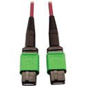 Tripp Lite N846D-01M-16AMG Multimode Fiber Optic Cable 400G OM4 Plenum MTP/MPO-APC F/F - 1 Meter