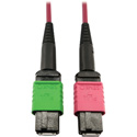 Tripp Lite N846D-01M-16BMG MMF Fiber Optic Cable 400G OM4 MTP/MPO-APC to MTP/MPO-UPC F/F - 1 Meter
