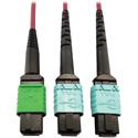 Tripp Lite N846D-01M-16DMG MMF Fiber Optic Cable MTP/MPO-APC to x2 12F MTP/MPO-UPC F/F - 1 Meter