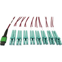 Tripp Lite N846D-01M-16EMG MMF Fiber Optic Breakout Cable 16F MTP/MPO-APC to x8 LC F/M - 1 Meter