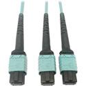 Tripp Lite N846D-01M-24BAQ MMF Fiber Optic Cable 24F MTP/MPO-PC to x2 12F MTP/MPO-PC F/F - 1 Meter