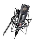 Neumann TLM193 Transformer Less Condenser Microphone