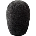 Point Source Audio CM-WSN-5 Windscreen for CM-i5