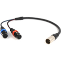 Remote Audio CAXSTEX5M Balanced Stereo Breakout Cable - 2 x XLR3F to XLR5M 18 Inch (5 inch Fan)