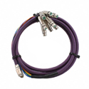 Switchcraft DB25M10XLRF DB25 TO 8-XLR Female (Tascam Pinout) - 10FT.