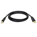 Tripp Lite U022-010 10-ft. USB 2.0 A/B Gold Device Cable (A Male to B Male)