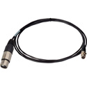 Connectronics Premium Quality 3-Pin XLR Female to 3-Pin Mini XLR Female Audio Cable - 1.5 Foot